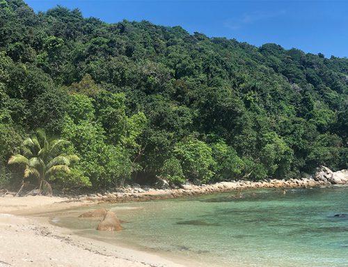 Wat te doen op eiland Redang?