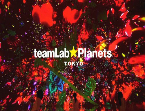 Teamlab Planets in Tokyo: fish and dizziness