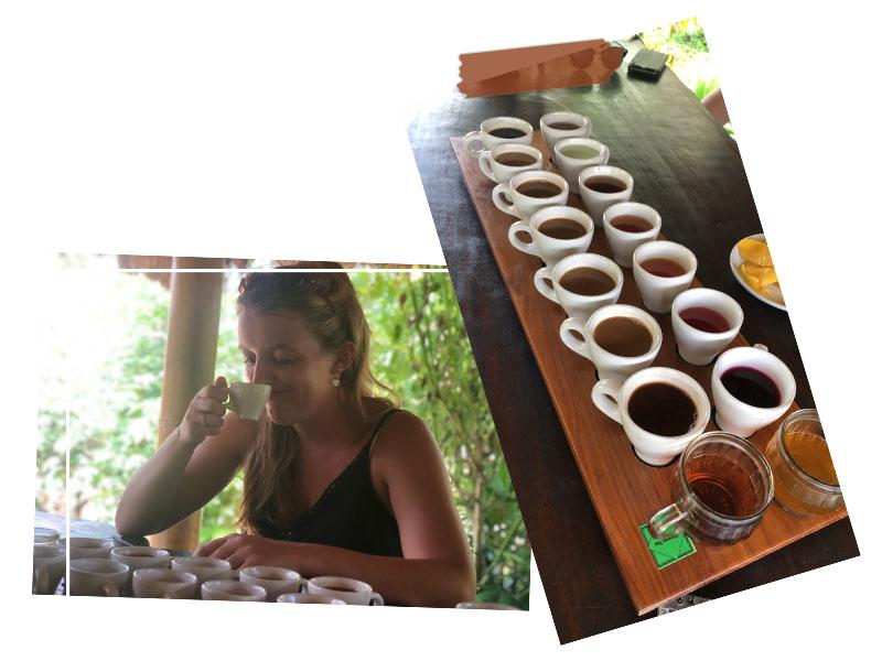 Coffee tour Bali