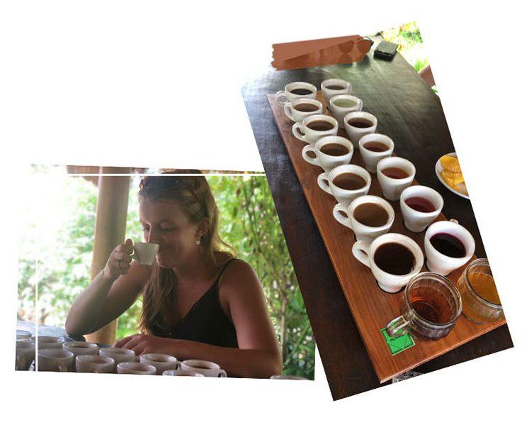 Balinese coffee, Bali