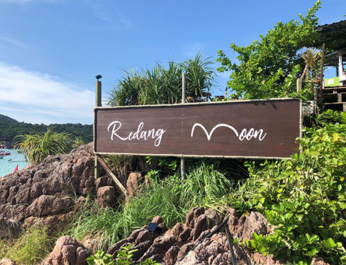 Dinner date review: Redang Moon – Vitamin Sea Kitchen