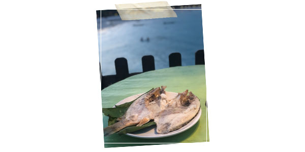 Jernahak fish Malaysia
