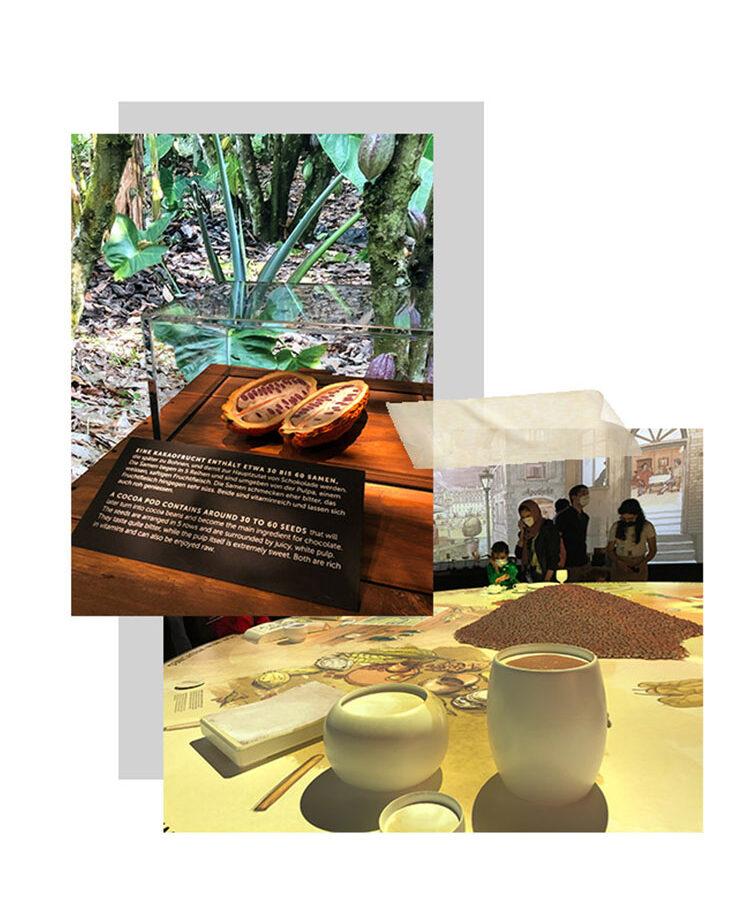 Museum Lindt chocolate